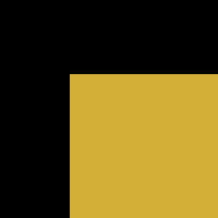 Lacquer -Black and gold