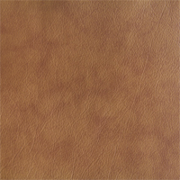 leather - patchy